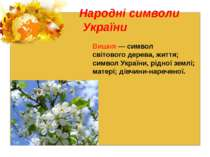 Народні символи України Вишня — символ світового дерева, життя; символ Україн...