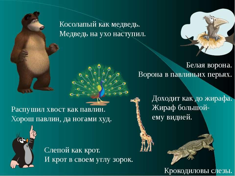 Косолапый как медведь. Медведь на ухо наступил. Слепой как крот. И крот в сво...