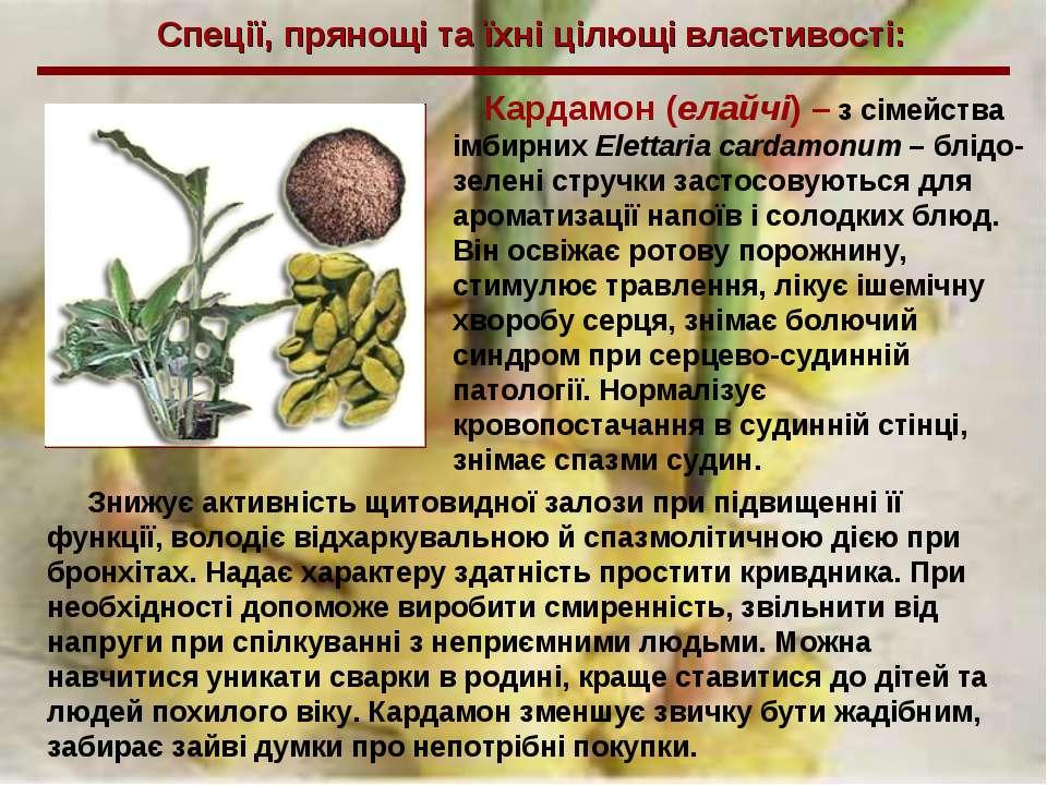 Спеції, прянощі та їхні цілющі властивості: Кардамон (елайчі) – з сімейства і...