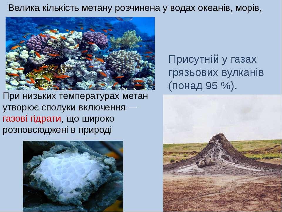 Присутній у газах грязьових вулканів (понад 95 %). Велика кількість метану ро...