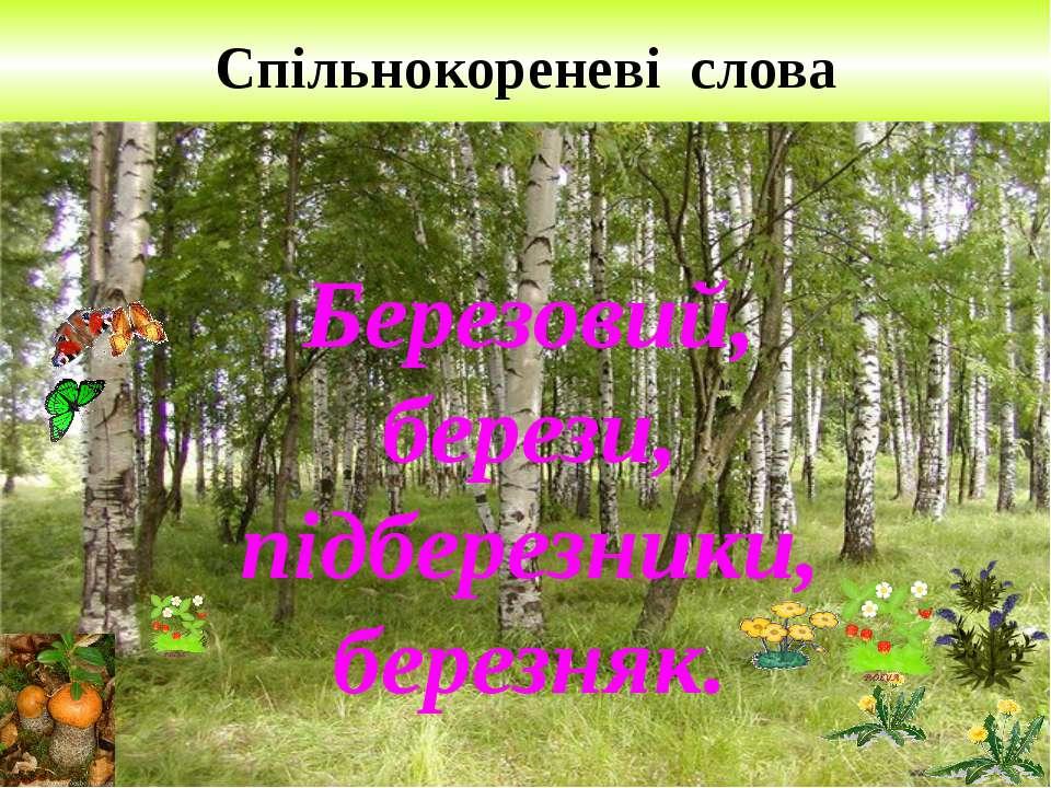 Спільнокореневі слова Березовий, берези, підберезники, березняк.