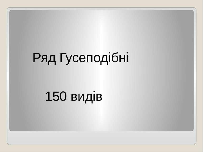 Ряд Гусеподібні 150 видів
