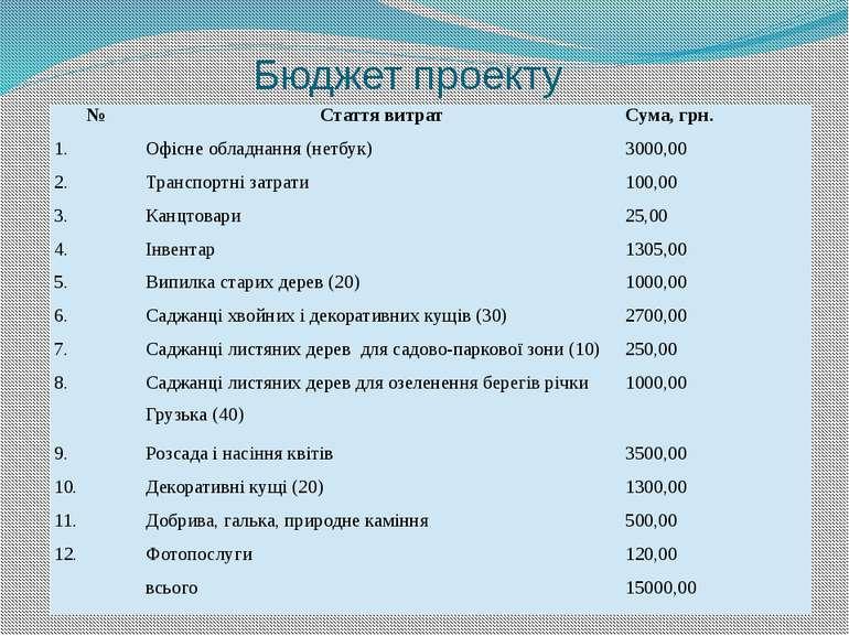 Бюджет проекту № Стаття витрат Сума, грн. 1. Офісне обладнання (нетбук) 3000,...