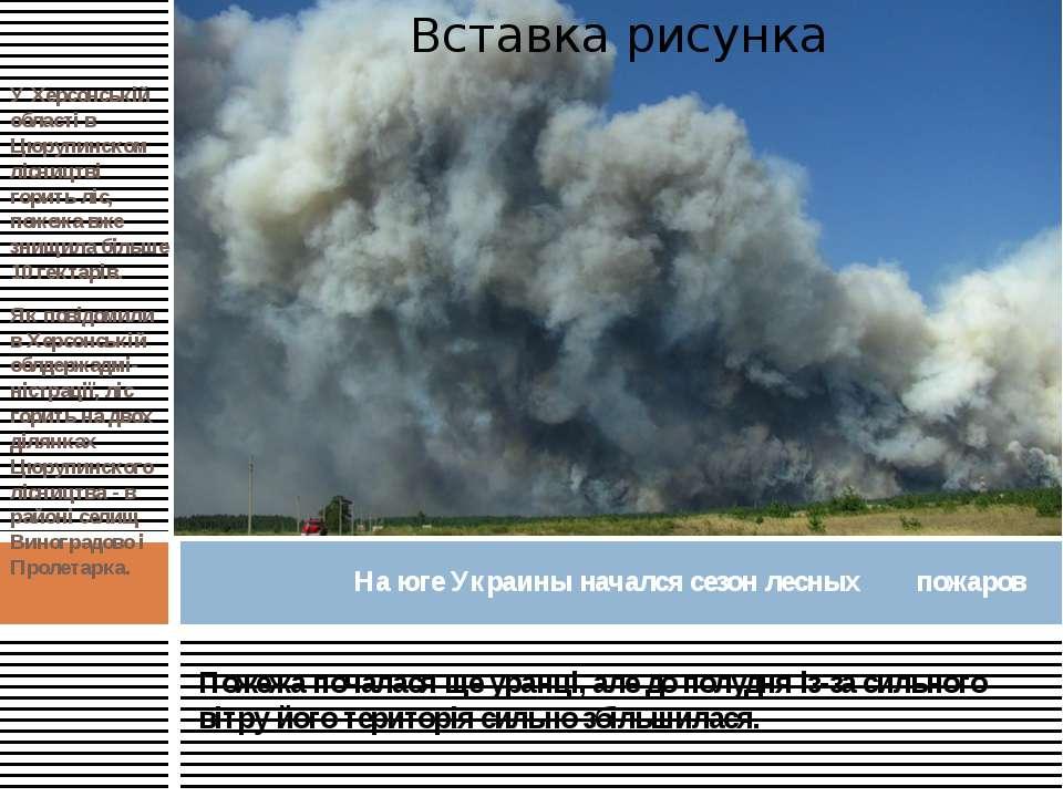 У Херсонській області в Цюрупинском лісництві горить ліс, пожежа вже знищила ...