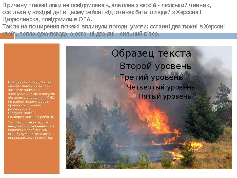 Працівники лісництва, які своїми силами не змогли загасити займання, звернули...