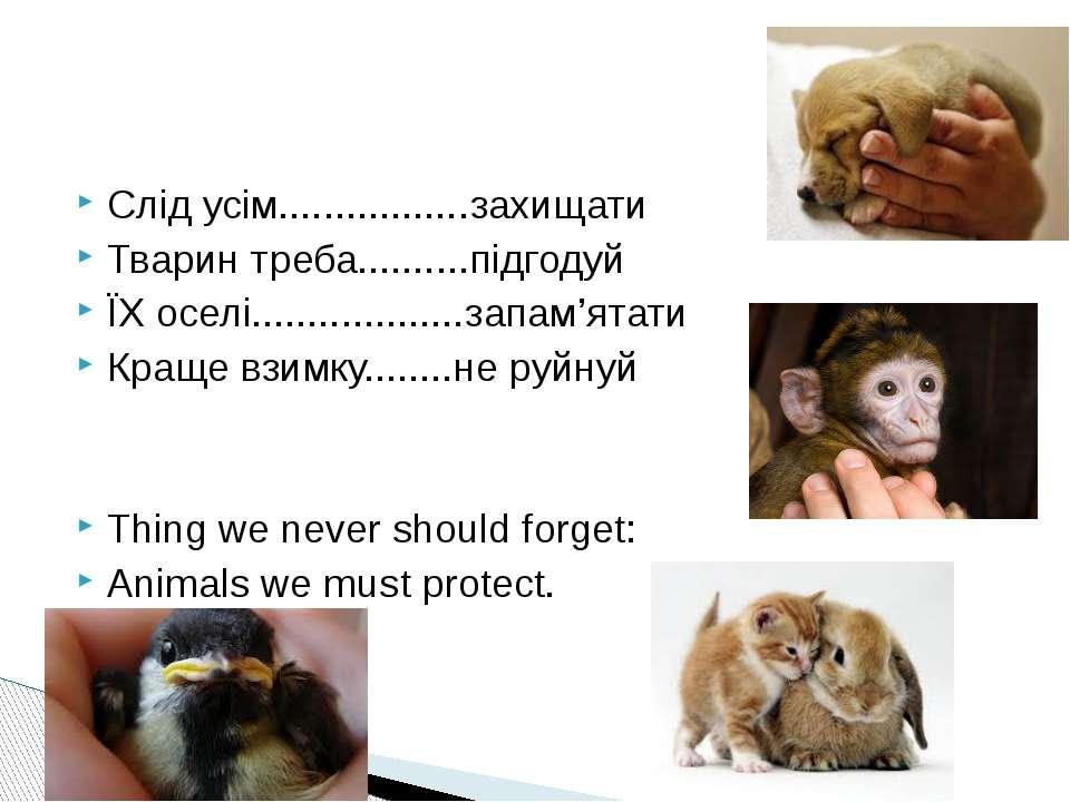 Слід усім.................захищати Тварин треба..........підгодуй ЇХ оселі......