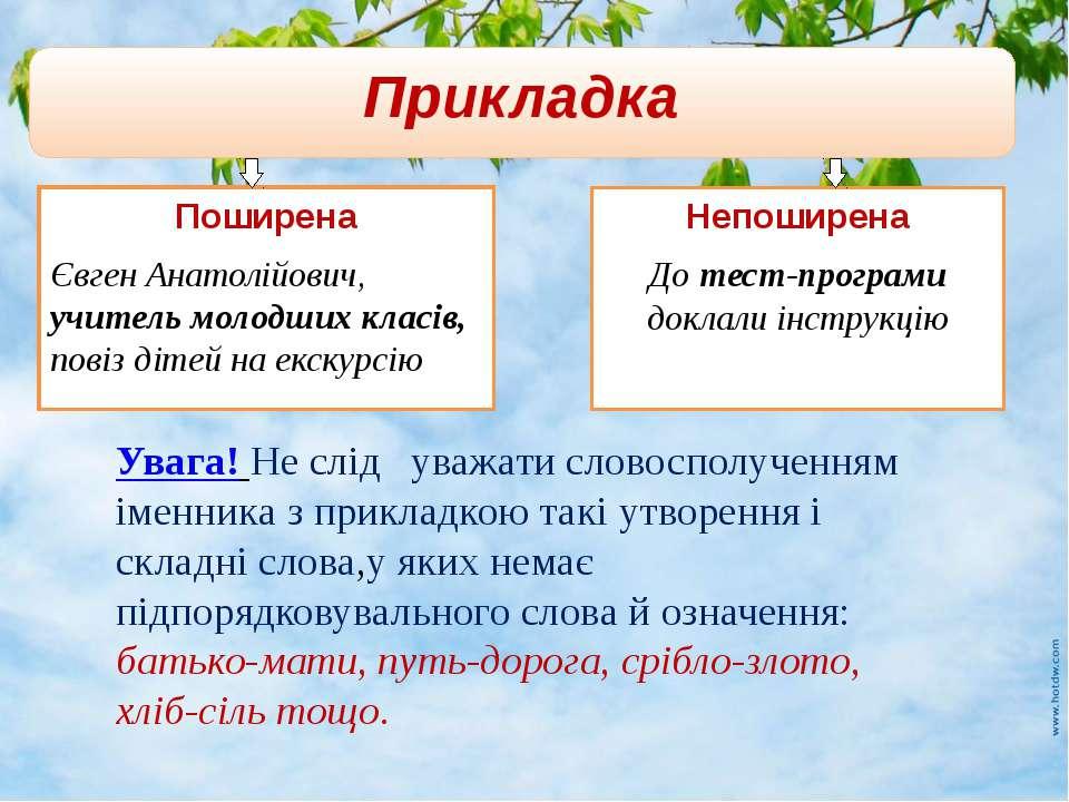 Прикладка Поширена Євген Анатолійович, учитель молодших класів, повіз дітей н...
