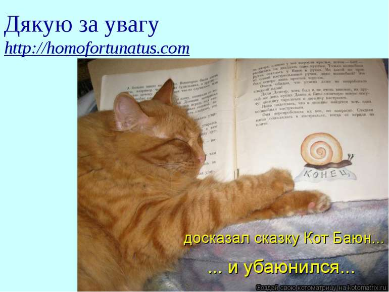 Дякую за увагу http://homofortunatus.com