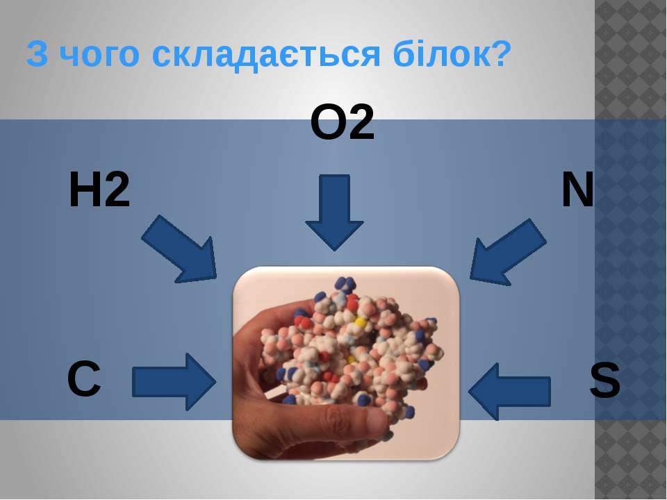 З чого складається білок? O2 N C H2 S