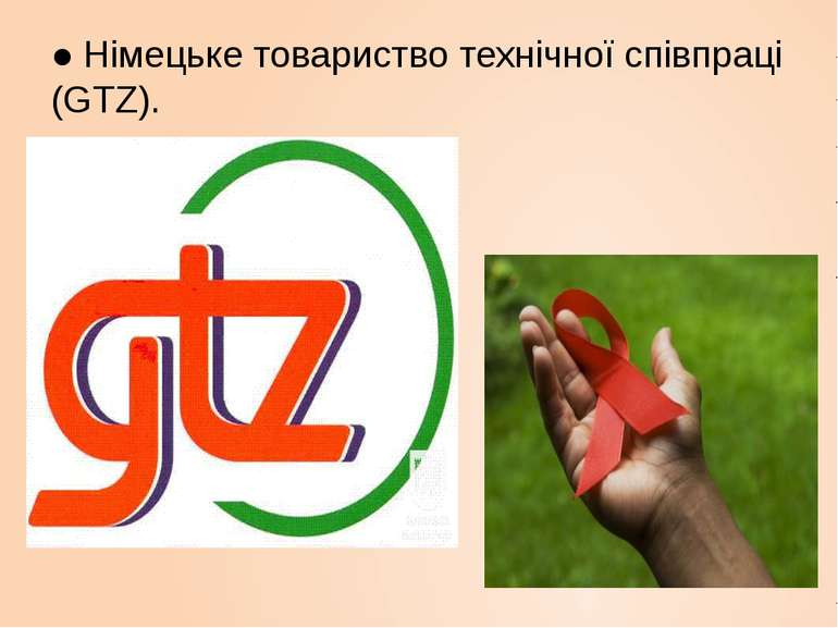 ● Німецьке товариство технічної співпраці (GTZ).