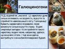 Канабіс (маріхуана і гашиш) отримують із конопель. При довготривалому вживанн...