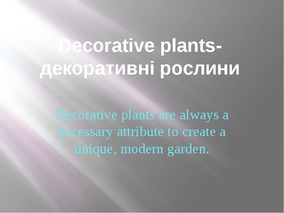 Decorative plants-декоративні рослини Decorative plants are always a necessar...