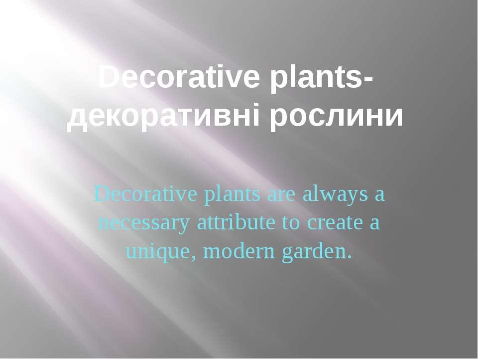 Decorative plants-декоративні рослини Decorative plants are always a necessar...