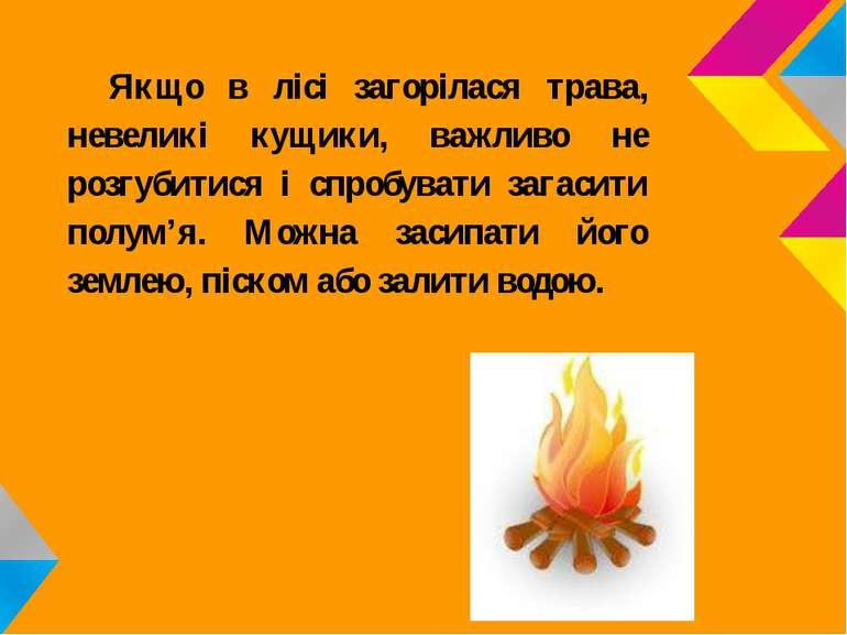Якщо в лісі загорілася трава, невеликі кущики, важливо не розгубитися і спроб...