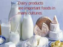 Dairy products are important foods in many cultures.