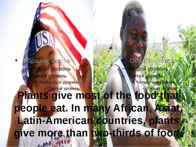 Plants give most of the food that people eat. In many African, Asiat, Latin-A...
