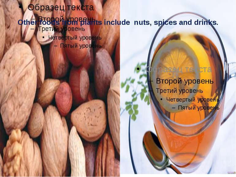 Other foods from plants include nuts, spices and drinks.