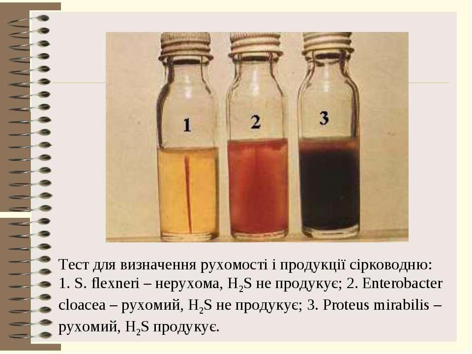 Тест для визначення рухомості і продукції сірководню: 1. S. flexneri – нерухо...