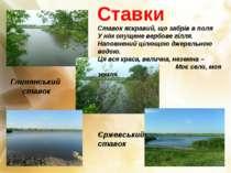 Ставки Глинянський ставок Єржевський ставок Ставок яскравий, що забрів в поля...