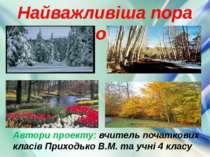 Найважливіша пора року Автори проекту: вчитель початкових класів Приходько В....