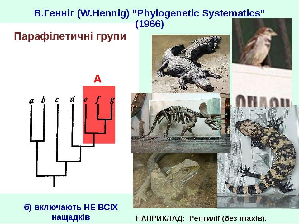 "В.Генніг (W.Hennig) ""Phylogenetic Systematics"" (1966) НАПРИКЛАД: Рептилії (бе..."