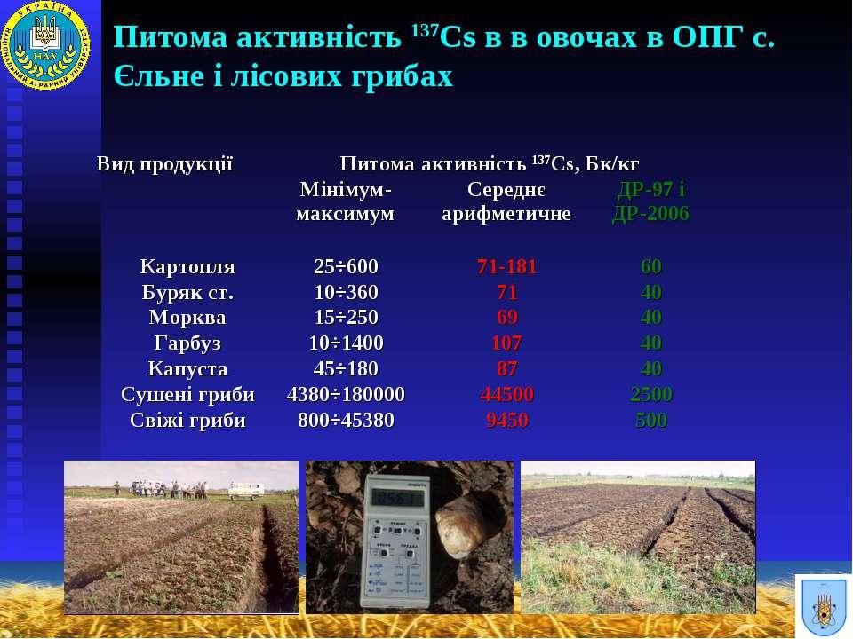 Питома активність 137Cs в в овочах в ОПГ с. Єльне і лісових грибах Вид продук...