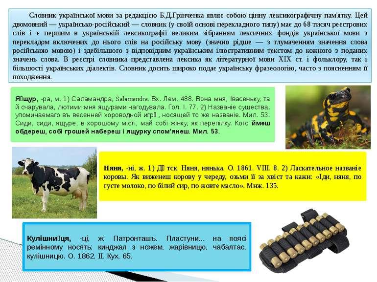 Словник української мови за редакцією Б.Д.Грінченка являє собою цінну лексико...