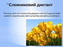 Словниковий диктант Вогонь,суть,ніч,боротьба,дядько,синього,дзьоб,київський,п...