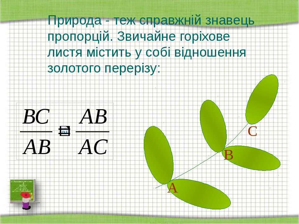 Природа - теж справжній знавець пропорцій. Звичайне горіхове листя містить у ...