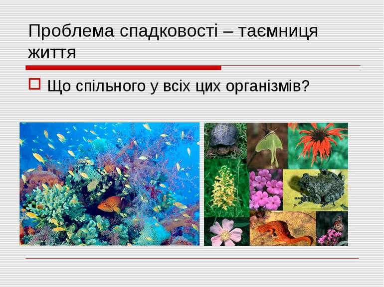 Проблема спадковості – таємниця життя Що спільного у всіх цих організмів?