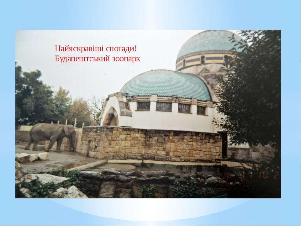 Найяскравіші спогади! Будапештський зоопарк