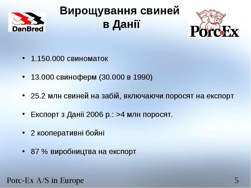 Вирощування свиней в Данії 1.150.000 свиноматок 13.000 свиноферм (30.000 в 19...