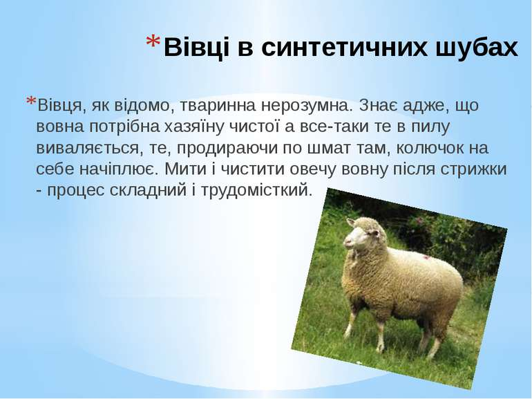 Вівці в синтетичних шубах Вівця, як відомо, тваринна нерозумна. Знає адже, що...