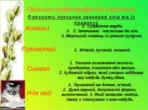 Лексико-орфографічна скринька Пояснити лексичне значення слів та їх правопис ...