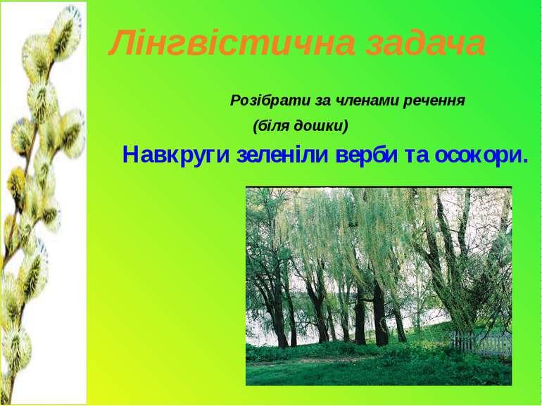 Лінгвістична задача Розібрати за членами речення (біля дошки) Навкруги зелені...
