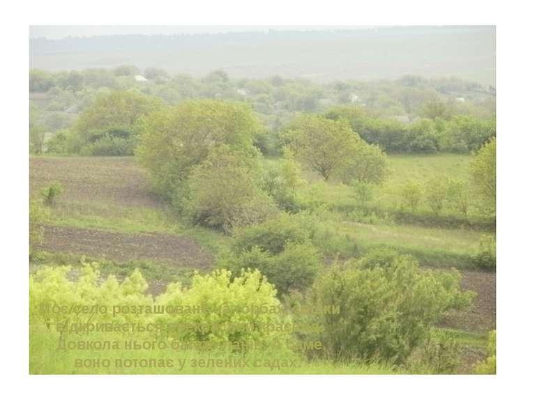 Моє село розташоване на горбах, звідки відкривається прекрасний краєвид. Довк...