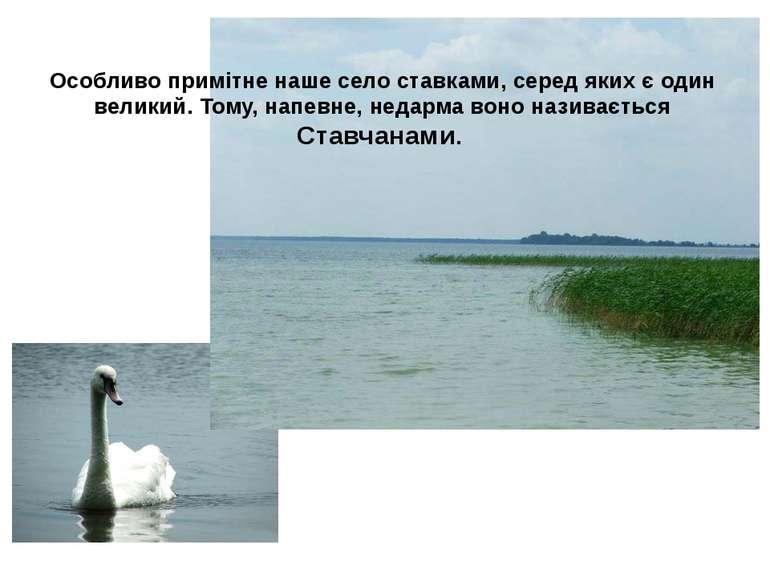 Особливо примітне наше село ставками, серед яких є один великий. Тому, напевн...