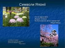 Символи Японії Хоч як вдивляйся – Жодної пилинки На білосніжних квітах хризан...