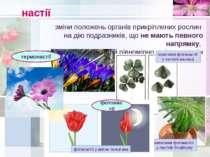 настії зміни положень органів прикріплених рослин на дію подразників, що не м...
