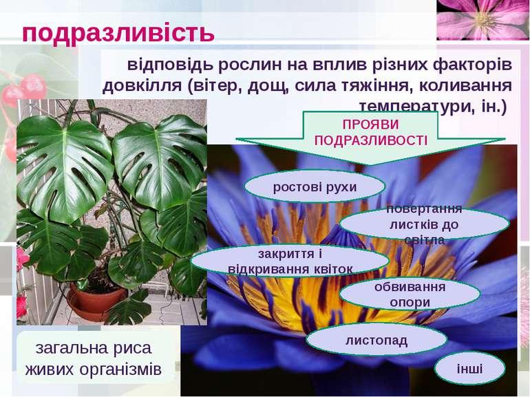 подразливість загальна риса живих організмів відповідь рослин на вплив різних...