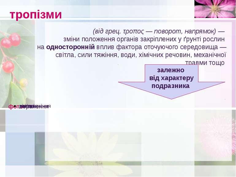 тропізми (від грец. τροπος— поворот, напрямок) — зміни положення органів зак...