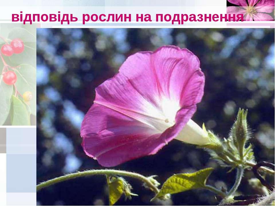відповідь рослин на подразнення