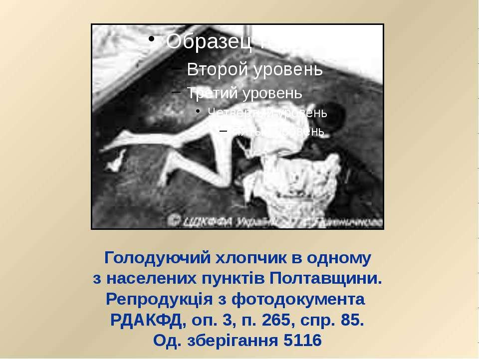 Голодуючий хлопчик в одному з населених пунктів Полтавщини. Репродукція з фот...