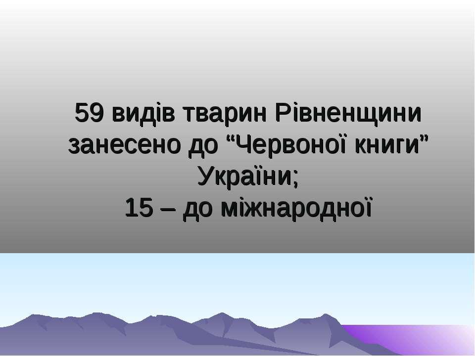 """59 видів тварин Рівненщини занесено до """"Червоної книги"""" України; 15 – до міжн..."""