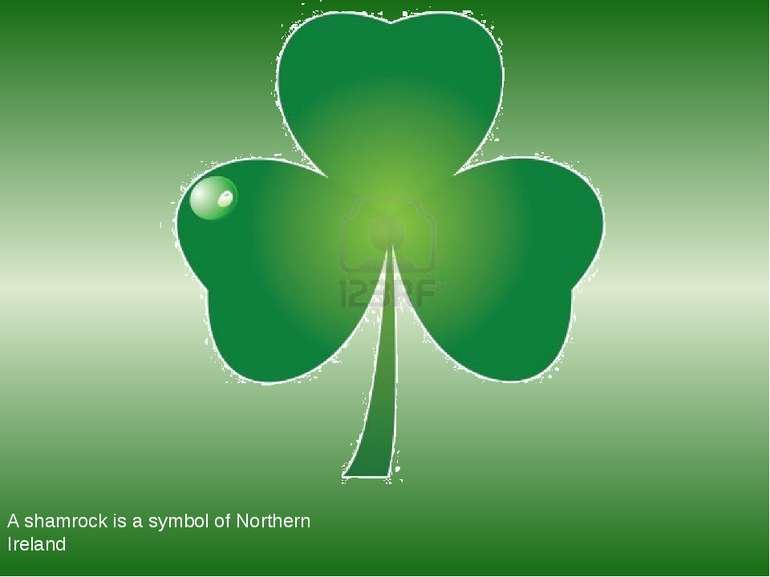 A shamrock is a symbol of Northern Ireland