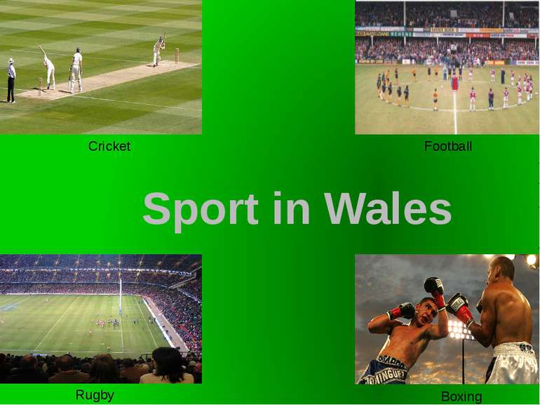 Cricket Football Rugby Boxing Sport in Wales