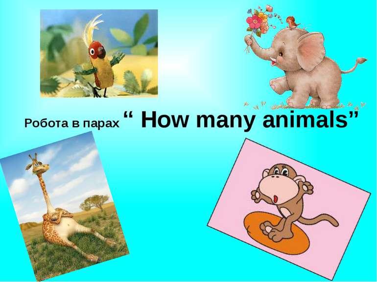 "Робота в парах "" How many animals"""