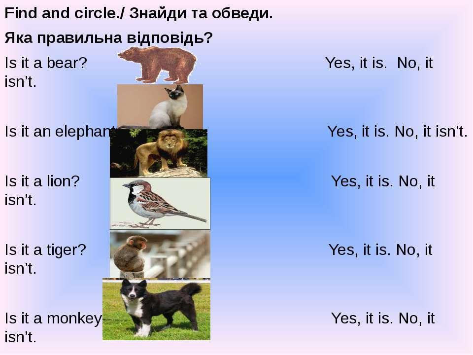 Find and circle./ Знайди та обведи. Яка правильна відповідь? Is it a bear? Ye...