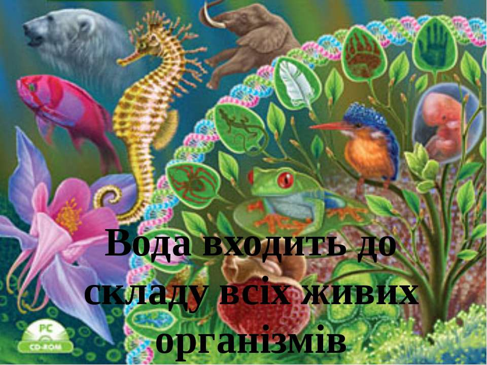 Вода входить до складу всіх живих організмів