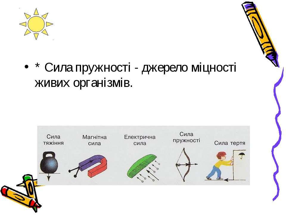 * Сила пружності - джерело міцності живих організмів.